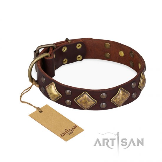 """Golden Square"" FDT Artisan Brown Leather Rottweiler Collar with Large Squares"