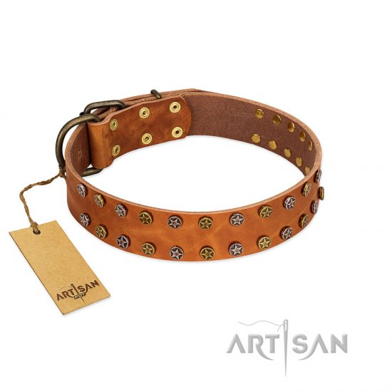 """Walk and Shine"" FDT Artisan Tan Leather Rottweiler Collar with Antiqued Studs"