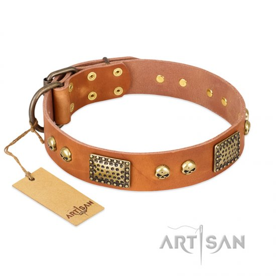 """Saucy Nature"" FDT Artisan Tan Leather Rottweiler Collar with Old Bronze Look Plates and Skulls"