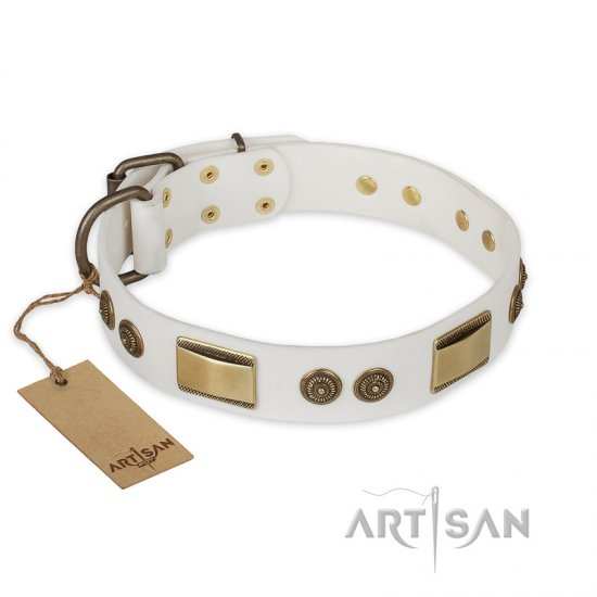 """Golden Avalanche"" FDT Artisan White Leather Rottweiler Collar with Old Bronze Look Plates and Circles"