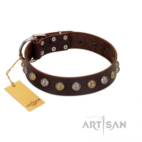 """Gape Buster"" FDT Artisan Brown Leather Rottweiler Collar with One Row of Studs"