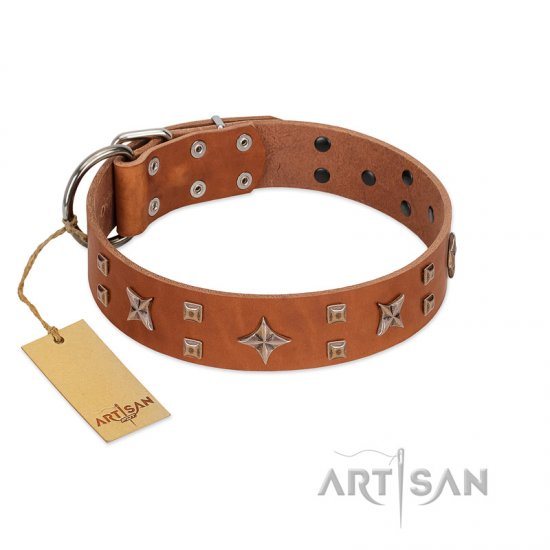 """Dreamy Gleam"" FDT Artisan Tan Leather Rottweiler Collar Adorned with Stars and Squares"