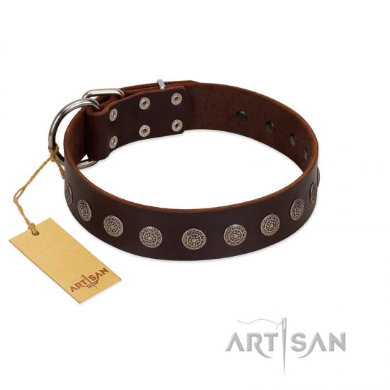 """Starry-Eyed"" Best Quality FDT Artisan Brown Designer Leather Rottweiler Collar with Small Plates"