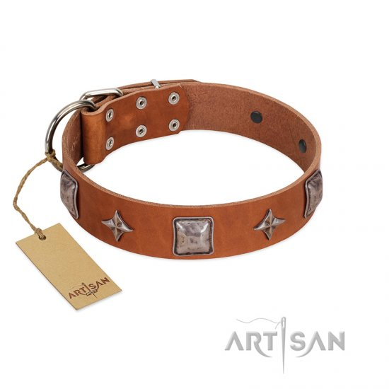 """Lucky Star"" FDT Artisan Tan Leather Rottweiler Collar with Silver-Like Embellishments"