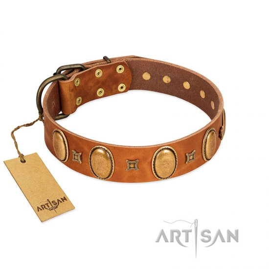 """Glossy Autumn"" Designer Handmade FDT Artisan Tan Leather Rottweiler Collar with Ovals and Studs"