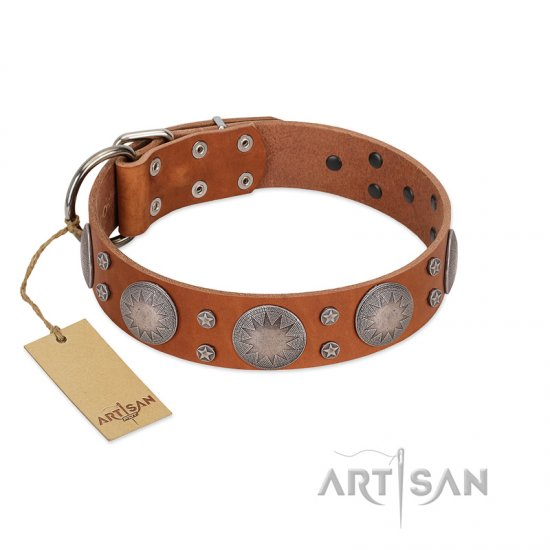 """Far Star"" FDT Artisan Tan Leather Rottweiler Collar with Engraved Studs"