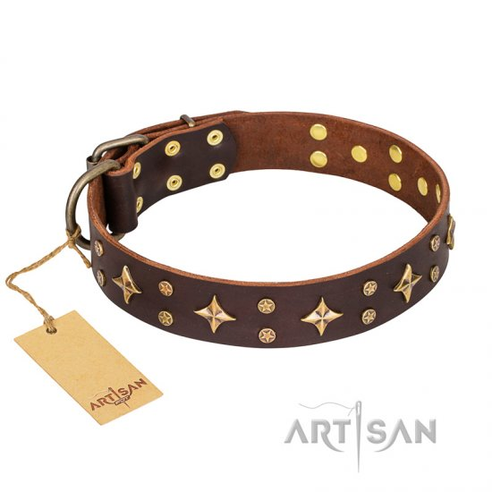 'High Fashion' FDT Artisan Embellished Brown Leather Rottweiler Collar