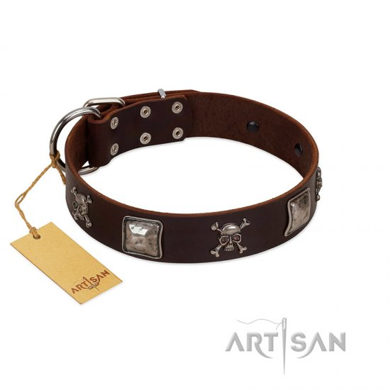 """Nut-Brown Finery"" Embellished FDT Artisan Brown Leather Rottweiler Collar with Chrome Plated Crossbones and Plates"