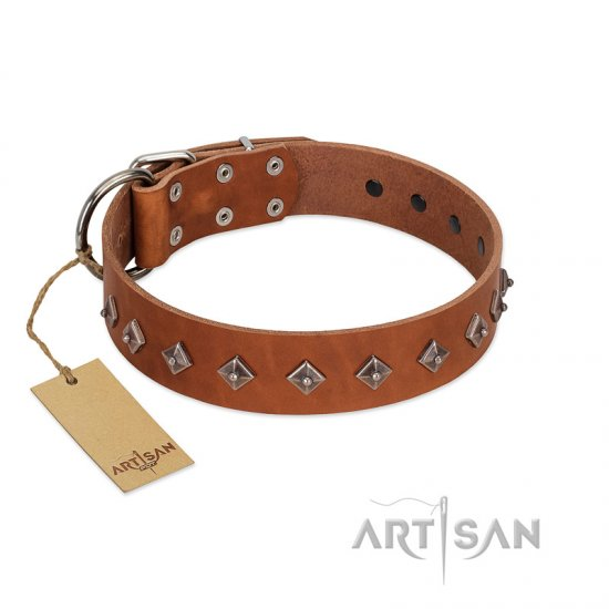 """Broadway"" Handmade FDT Artisan Tan Leather Rottweiler Collar with Dotted Pyramids"