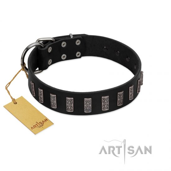 """Black Prince"" Handmade FDT Artisan Black Leather Rottweiler Collar with Silver-Like Adornments"