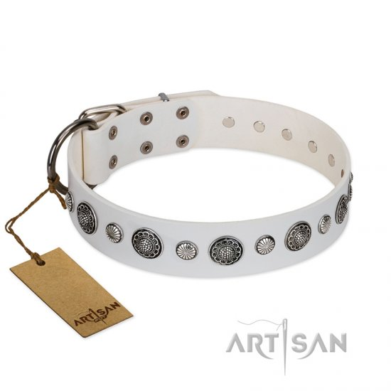 """Fluff-Stuff Beauty"" FDT Artisan White Leather Rottweiler Collar with Silver-like Studs and Conchos"