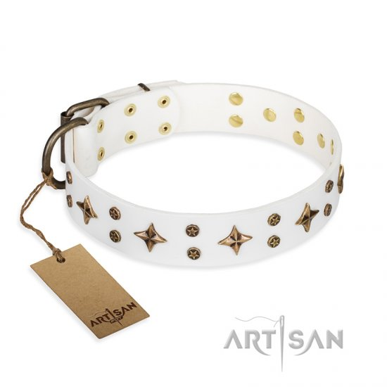 'Bright stars' FDT Artisan White Leather Rottweiler Dog Collar with Old Bronze Look Decorations - 1 1/2 inch (40 mm) wide