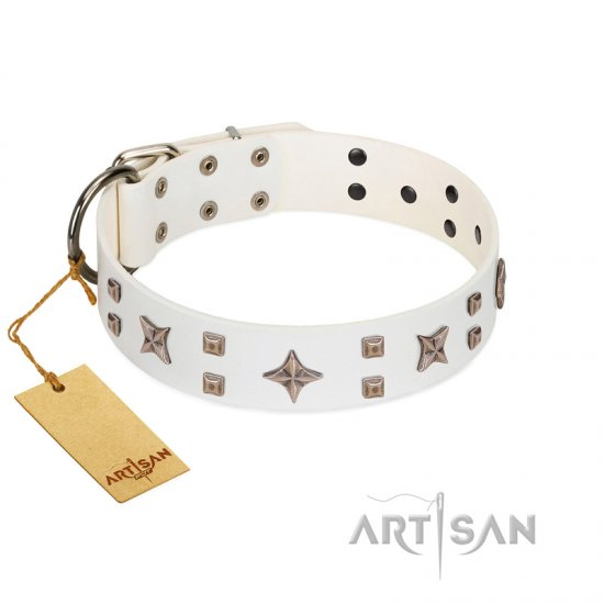 """Starry Heaven"" Designer Handcrafted FDT Artisan White Leather Rottweiler Collar with Stars and Studs"