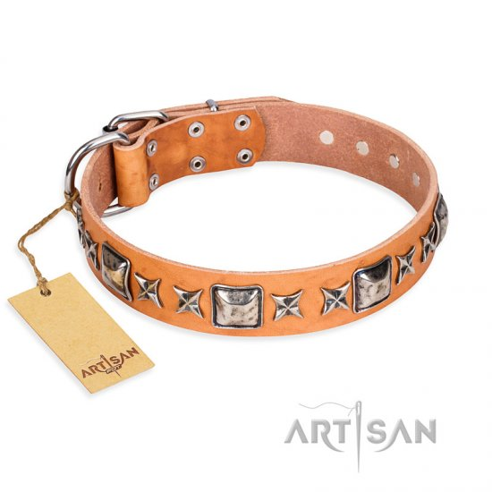 """Glamour Finery"" FDT Artisan Female Rottweiler collar of natural leather with stylish old-looking circles"