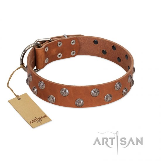 """Waltz of the Flowers"" Handmade FDT Artisan Tan Leather Rottweiler Collar with Chrome-plated Engraved Studs"