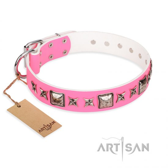 """Lady in Pink"" FDT Artisan Extravagant Leather Rottweiler Collar with Studs"