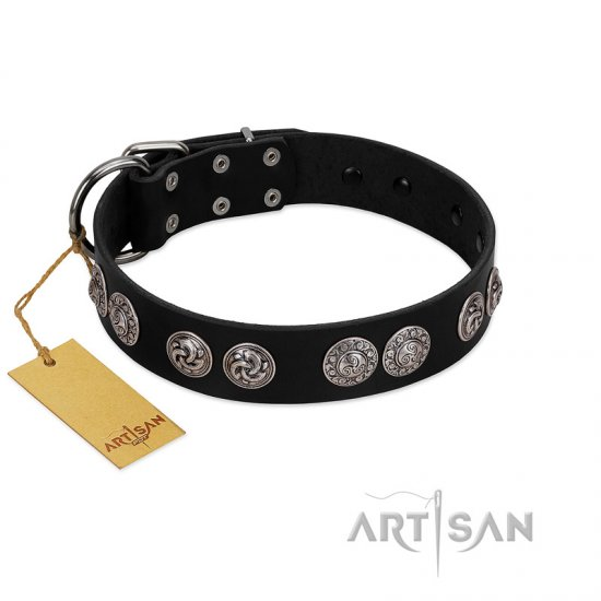 """Magic Amulete"" Handcrafted FDT Artisan Black Leather Rottweiler Collar with Chrome-Plated Shields"