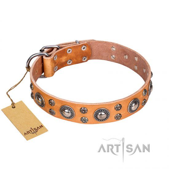 'Extra Sparkle' FDT Artisan Handcrafted Rottweiler Tan Leather Dog Collar