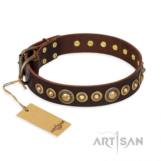 """Ancient Warrior"" FDT Artisan Fancy Leather Rottweiler Collar with Old-Bronze Plated Decorations"