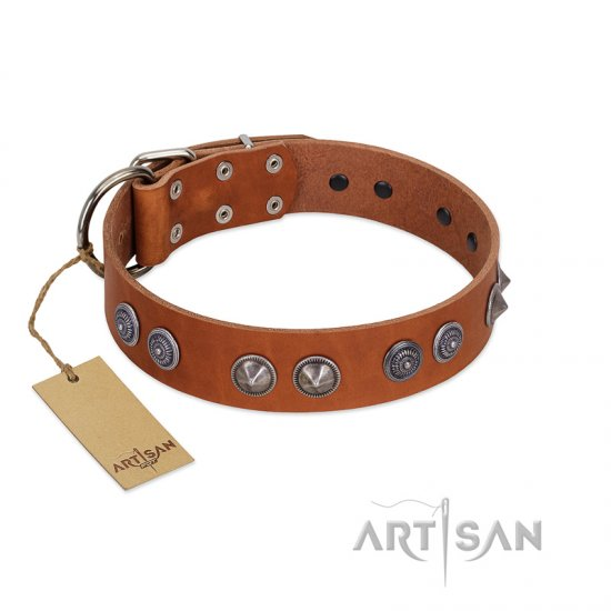 """Silver Necklace"" Incredible FDT Artisan Tan Leather Rottweiler Colar with Silver-Like Adornments"