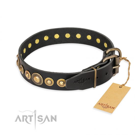 """Gold Mine"" FDT Artisan Black Leather Rottweiler Collar with Amazing Bronze-Plated Round Studs"