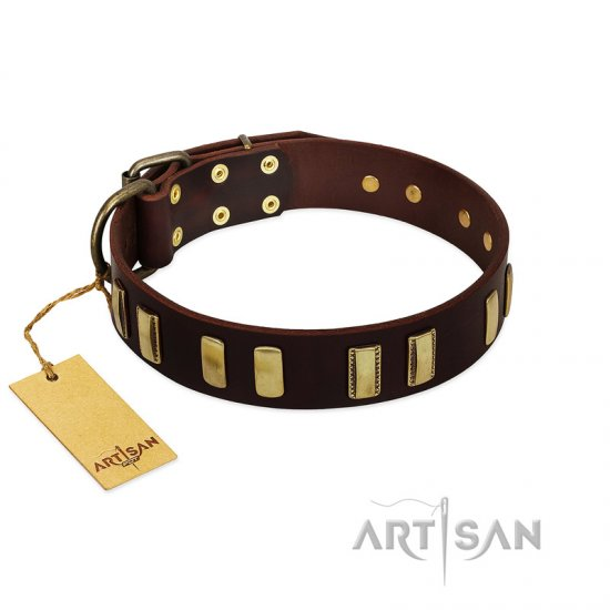 """Peace and Harmony"" FDT Artisan Brown Leather Rottweiler Collar with Plates"