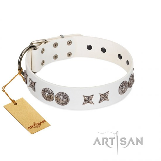 """Seventh Heavens"" FDT Artisan White Leather Rottweiler Collar with Chrome-plated Stars and Engraved Brooches"