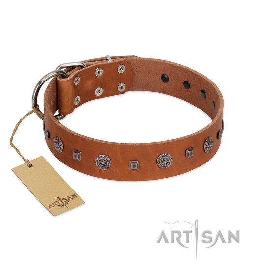 """Sweet Caramel"" Designer FDT Artisan Tan Leather Rottweiler Collar"
