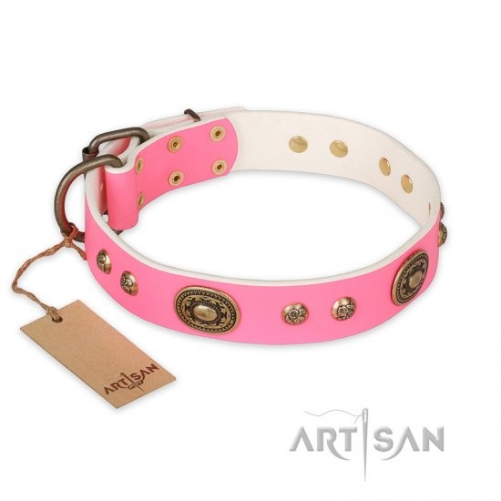 """Sensational Beauty"" FDT Artisan Pink Leather Rottweiler Collar with Old Bronze Look Plates and Studs"