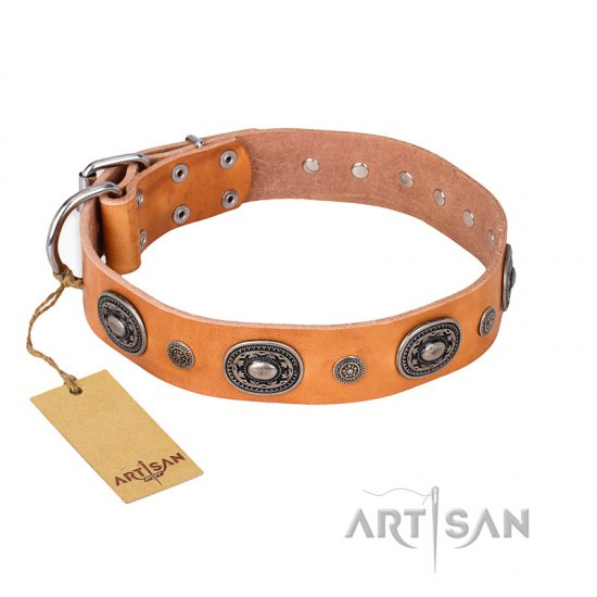 """Twinkle Twinkle"" FDT Artisan Incredible Studded Tan Leather Rottweiler Collar"