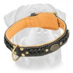 Royal Leather Rottweiler Collar with Inside Nappa Leather Lining