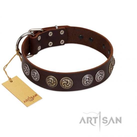 """Treasure Hunter"" FDT Artisan Brown Leather Rottweiler Collar with Old-Bronze-like and Silvery Medallions"