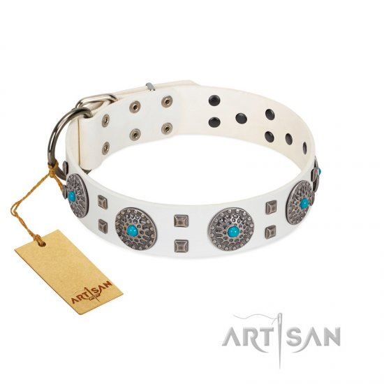 """Blue Sapphire"" Designer FDT Artisan White Leather Rottweiler Collar with Round Plates and Square Studs"