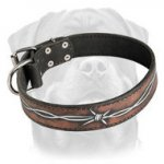 Handpainted by our artists leather best dog collar-Barbed Wire