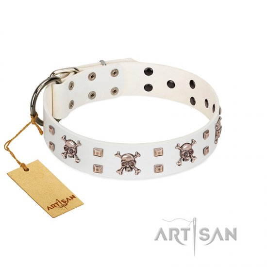"""Skull Island"" Premium Quality FDT Artisan White Designer Rottweiler Collar with Crossbones and Studs"