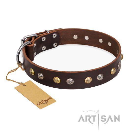 """Rare Flower"" FDT Artisan Brown Leather Rottweiler Collar Adorned with Old-look Hemisphere Studs"