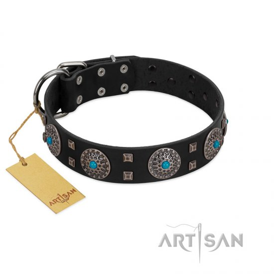 """Boundless Blue"" FDT Artisan Black Leather Rottweiler Collar with Chrome Plated Brooches and Square Studs"