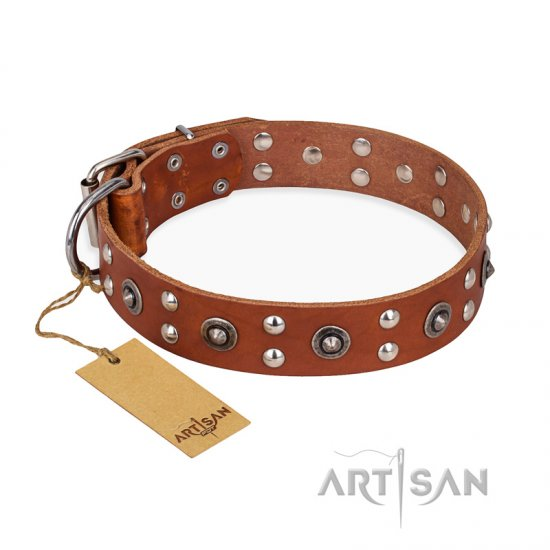 """Silver Elegance"" FDT Artisan Decorated Leather Rottweiler Collar with Old Silver-Like Plated Studs and Cones"