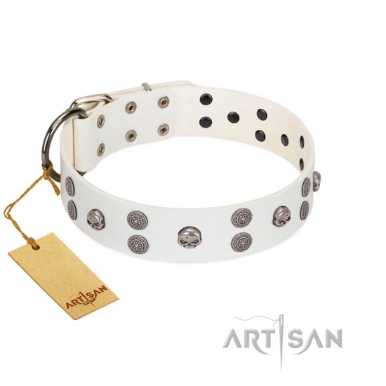 """Edgy Look"" FDT Artisan White Leather Rottweiler Collar with Silver-like Skulls"