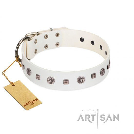 """Drops on Snow"" Handmade FDT Artisan White Leather Rottweiler Collar Adorned with Silver-Like Studs"