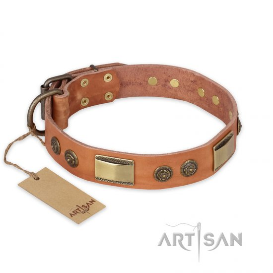 """Lost Desert"" FDT Artisan Leather Rottweiler Collar with Brass Decorations"