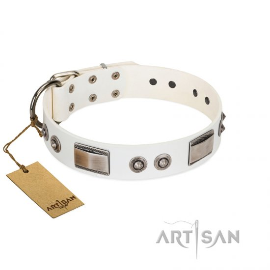 """Good-Luck Piece"" FDT Artisan White Rottweiler Collar Adorned with Chrome Plated Studs and Plates"