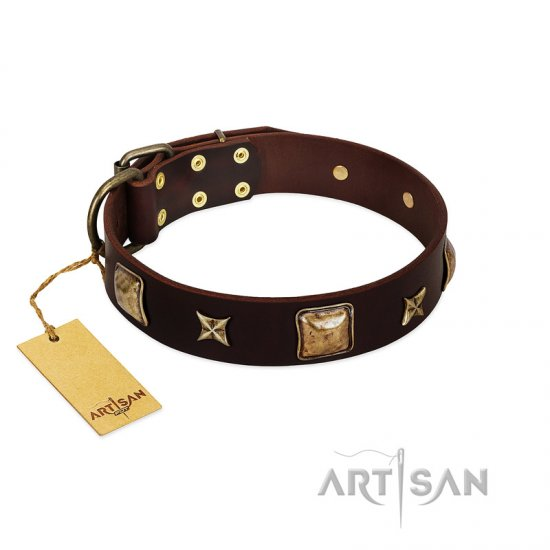 """Choco Dreams"" FDT Artisan Brown Leather Rottweiler Collar with Squares and Stars"