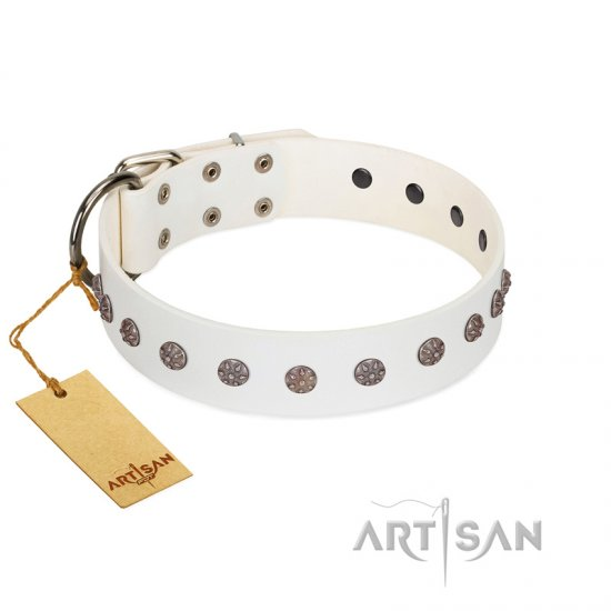 """Fresh Breeze"" FDT Artisan Elegant White Rottweiler Collar with Silvery Studs"