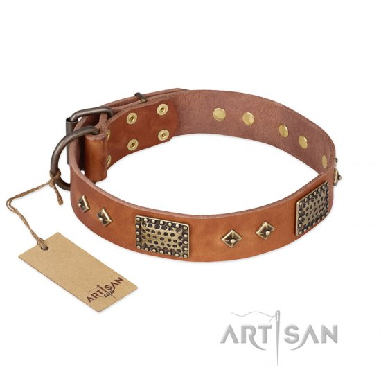 """Catchy Look"" FDT Artisan Decorated Tan Leather Rottweiler Collar"