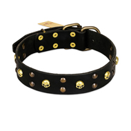 FDT Artisan 'Heavy Metal' Leather Rottweiler Collar with Skulls and Half-Balls 1 1/2 inch (40 mm)