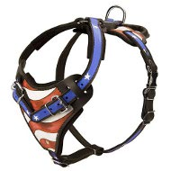 American Flag Painted Agitation/Protection Harness for Rottweiler