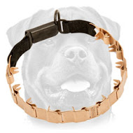 Curogan Neck Tech Sport Rottweiler Pinch Collar