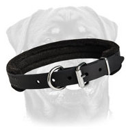 Padded Dog Collar - Large Dog Breeds Accessory - Rottweiler Collar with Padding 1 inch (2.5cm) width