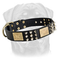 Rottweiler Leather Dog Collar - Old Brass Massive Plates, Nickel Plated Cones and Spikes